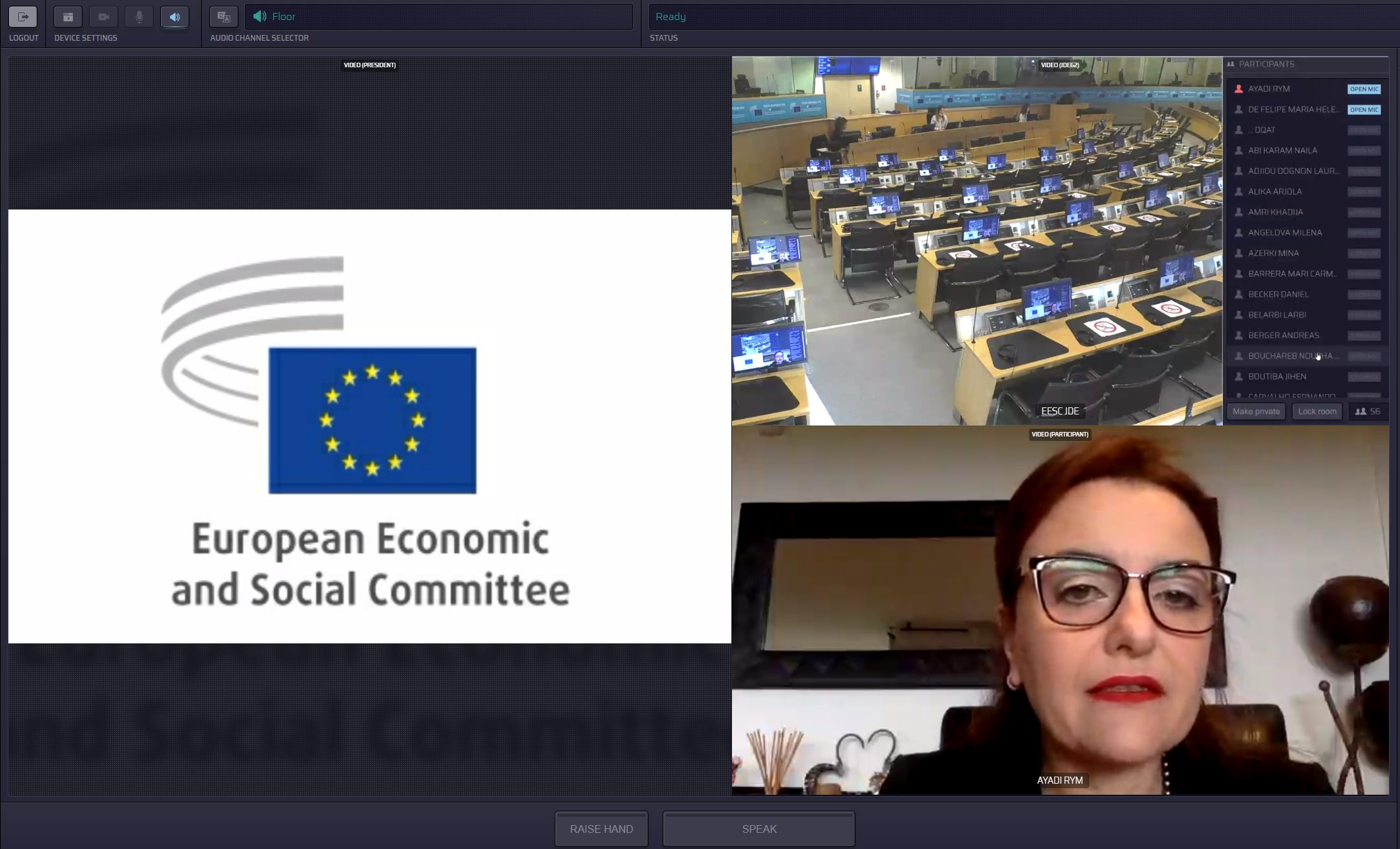 EMEA President Participates at the Euromed Summit 2020 of the Economic and Social Councils and Similar Institutions