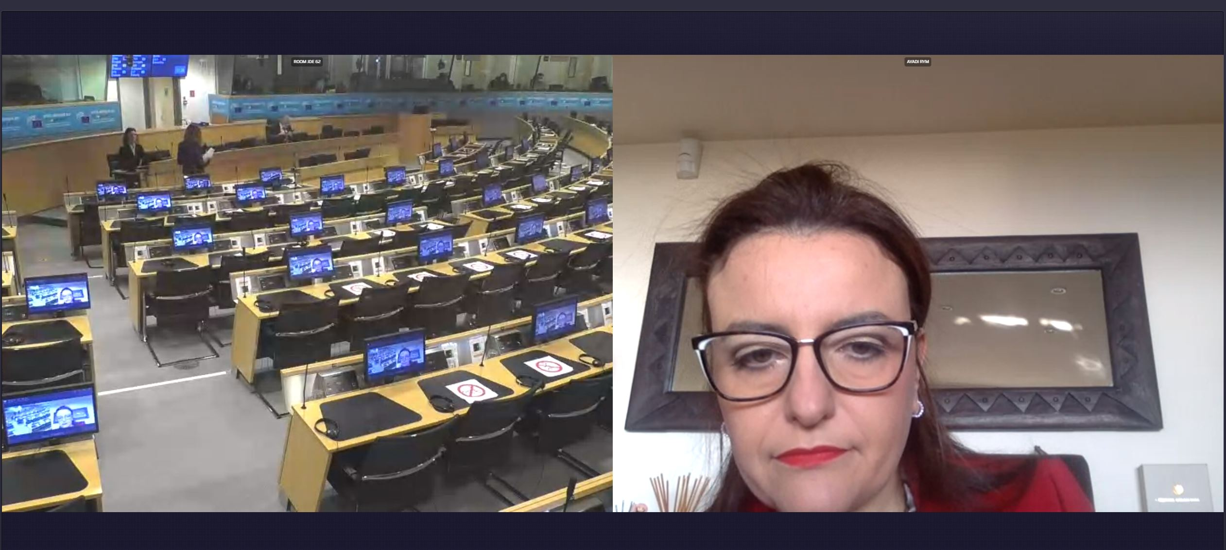 EMEA Participation at the meeting of the European Economic and Social Committee