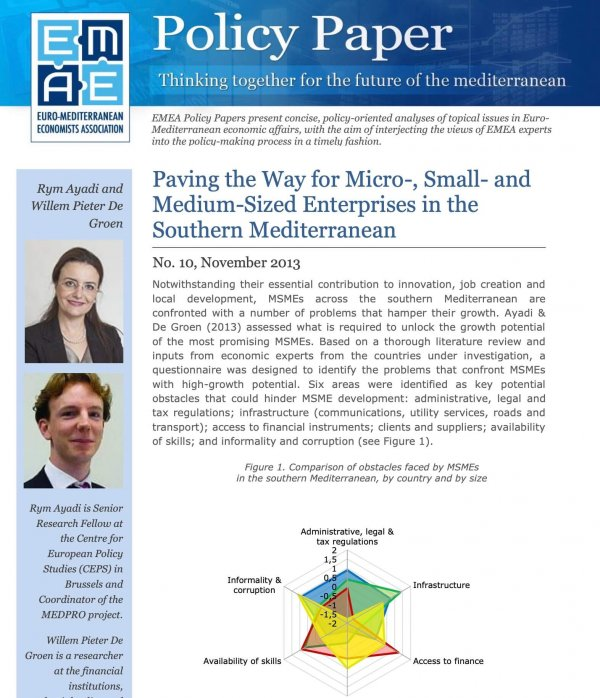 Paving the Way for Micro-, Small- and Medium-Sized Enterprises in the Southern Mediterranean
